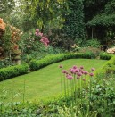News: Extreme weather 'to kill off British lawns'